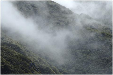 Hiking in the fog.